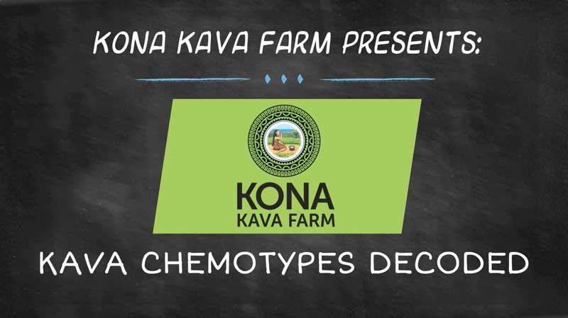kona-kava-farm-youtube